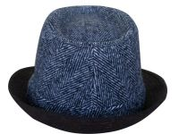 Winter fedora hat